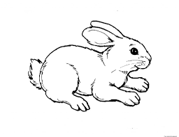 childrens animal coloring pages 12216