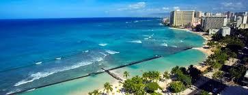 Buffet Restaurants In Honolulu by The 15 Best Places For Crab Legs In Honolulu