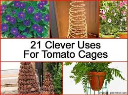 Tomato Cage Milk Jug Witch Tomato Cage Uses Pinterest by 98 Best Tomato Cages Repurposed Images On Pinterest Holiday