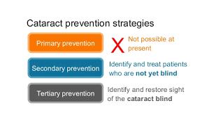 Preventing Blindness Global Blindness Understanding Cataract Output