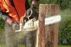 best chainsaw sharpener 2017 u2013 reviews u0026 buyer u0027s guide october 2017