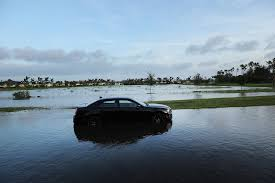 22 Best Year 8 History by How To Avoid Buying A Car Flooded By Hurricanes The New York Times
