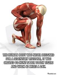 Body Meme - human body meme picture webfail fail pictures and fail videos