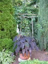 essays on gardening