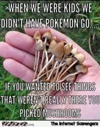 Pokemon Kid Meme - when we were kids we didn t have pokemon go funny meme pmslweb
