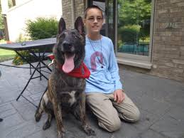 how to arrange a free therapy dog home visit friendship circle