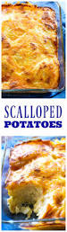 thanksgiving scalloped potatoes scalloped potatoes the who ate everything