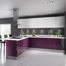 couleur feng shui cuisine couleur feng shui salon 6 une cuisine aubergine pour ambiance