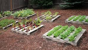 Garden Ideas With Pallets 10 Diy Garden Ideas For Using Pallets Greenhouses Nz