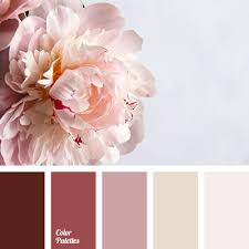 color beich shades of beige color palette ideas