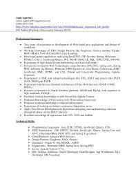 Sample Resume For Java J2ee Developer by Amit Agarwal Resume