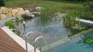 beauty of swimming pool landscaping various ways water pumping