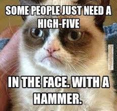 Unhappy Cat Meme - grumpy cat cat memes high five with hammer grumpy cat