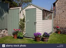painted garden shed in small english town house garden with pots