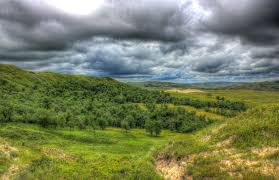 North Dakota forest images Free stock photo of forest in the landscape at white butte north jpg