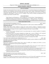 Employment History Resume Stunning Senior Financial Analyst Resume Example With Executive