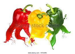pepper splash vegetable stock photos u0026 pepper splash vegetable