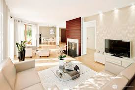 How To Decorate A Long Narrow Living Room Living Room Marvelous Small Living Room Decoration With White