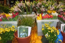 garden design ct digs