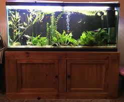 55 gallon aquarium light 55 gallon aquarium stand finished projects pinterest 55 gallon