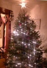 vermont christmas trees