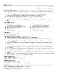 100 cover letter buzz words best 25 resume writing ideas on