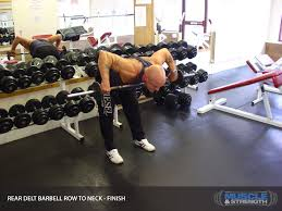 Bench Barbell Row Rear Delt Barbell Row To Neck Video Exercise Guide U0026 Tips