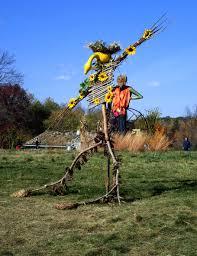 free images tree fall flower pole harvest autumn pumpkin