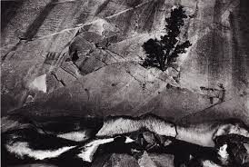 ansel adams yosemite and the range of light poster new acquisitions scott nichols gallery