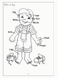 human body coloring pages for kids c0lor 189062 body systems