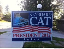 Keyboard Cat Meme - keyboard cat for president weknowmemes