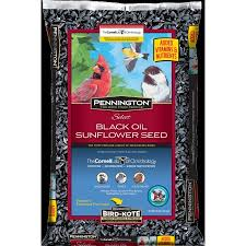 pennington select black oil sunflower seed wild bird seed and feed