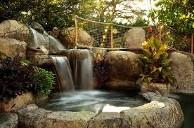 Backyard Waterfall Design Ideas Landscaping Network - Backyard waterfall design