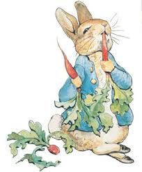 marry dump peter rabbit pat bunny u0026 velveteen