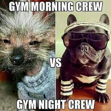 Gym Time Meme - morning crew used to be dressed like rocky instead of a