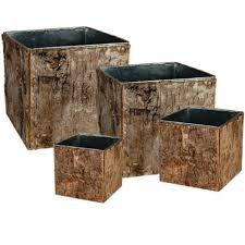 Cube Vase Centerpieces by Set Of 4 Natural Birch Wood Wrapped Zinc Cube Vases Cys Excel