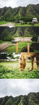 Seeking Destination Wedding Seeking Kualoa Ranch Paliku Gardens Milestone Events