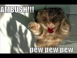Pew Pew Pew Meme - craven s crazy corner pew pew pewpew you re dead youtube