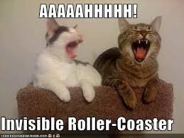 Invisible Cat Memes - deluxe invisible cat memes aaaaahhhhh invisible roller coaster