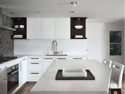 Kitchen Design Vancouver Patricia Gray Interior Design Blog Kitchen Design U0026 Trends At