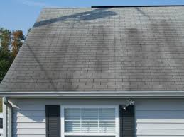 Mallard Roof Cleaning by Roof Fungus U0026 Zincshield Roof Zinc Strips Prevent Roof Stains