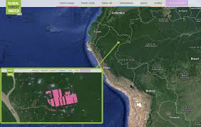 Interactive Map Global Forest Watch by Zooming In U201csustainable U201d Cocoa Producer Destroys Pristine Forest