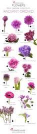 best 25 purple flower names ideas on pinterest purple names