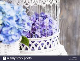 Flower Decor Hydrangea Flowers In The White Birdcage Flower Decor For The Home