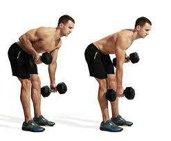 Full Body Dumbbell Workout No Bench The 30 Best Back Exercises Of All Time