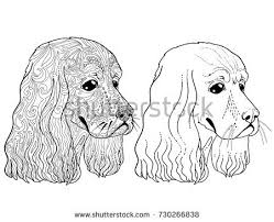 ethnic decorative doodle dog coloring book stock vector 507496591