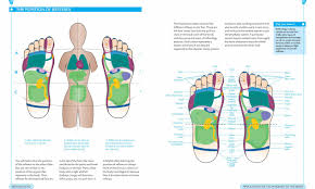 Foot Reflexology Map Book