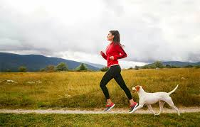 17 paw fect dogs for runners active