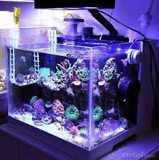 Reef Aquarium Lighting Led Light Coral Grow Marine Reef Tank White Blue Aquarium Fish
