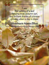 best 25 quotes about autumn ideas on autumn quotes